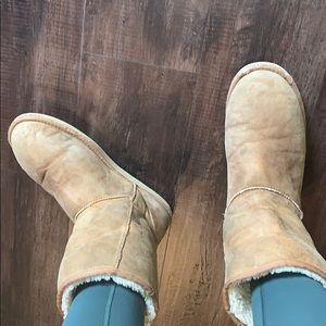 Light brown short UGG boots